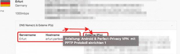 Perfect-Privacy VPN Server IP für PPTP herausfinden.