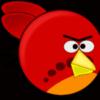 θυμωμένος πτηνά pixabay