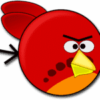 angry birds pixabay
