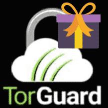TorGuard VPN: BREZPLAČNO GL-MT300N-V2 VPN Usmerjevalnik in brezplačna platnica za spletno kamero pri nakupu 2-let-OnlineVideoPakets!
