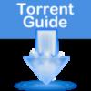 Οδηγός Torrent